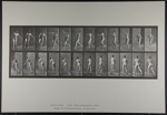 Cricket; over arm bowling. [M. 290]; Da Capo Press; Muybridge, Eadweard; 1887; 1972:0288:0067