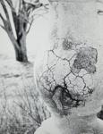 Ballustrade [sp]; Prather, Winter; 1950; 1981:0025:0003