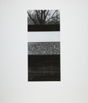 Untitled; Fichter, Robert; ca. 1967; 1971:0439:0001