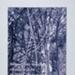 Untitled [Beneath the boughs...]; Dilbert, Rita; 1994; 2000:0136:0013