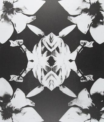 Untitled [Flowers]; Lyons, Joan; ca. 1970s; 1987:0090:0022