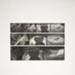 Untitled [Carol playing the flute]; Wood, John; 1968; 1975:0012:0016