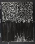 House with a shakes roof, Idaho; Webb, Todd; 1960; 1982:0091:0002