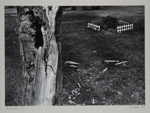 Rochester 69; Rice, Leland; 1969; 1982:0052:0001