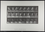Base-ball; batting. [M. 277]; Da Capo Press; Muybridge, Eadweard; 1887; 1972:0288:0054