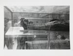 Tate [British Museum?]; McAdams, Dona Ann; 1987; 1987:0089:0013