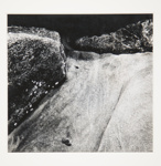 [Untitled, abstraction of natural forms]; Wells, Alice; ca. 1965; 1972:0287:0065