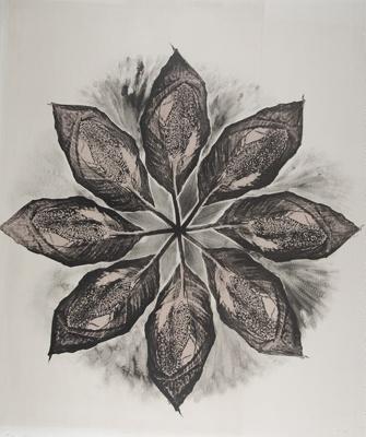 Untitled [Leaves]; Lyons, Joan; 1978; 1989:0090:0023