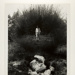 [untitled]; Uelsmann, Jerry; 1965; 1971:0117:0001