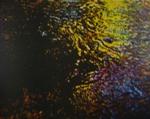 Brook In Spring; Hyde, Scott; 1978; 2000:0075:0004