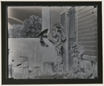 Untitled, [two children petting dog over a wooden fence]; Wells, Alice; ca. 1970; 1974:0046:0002