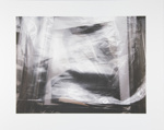 Untitled [Mylar and photographs]; Manchee, Doug; 2008; 2009:0060:0011