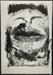 Kiss; Fichter, Robert; 1965; 1971:0400:0001