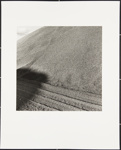 Untitled [Tracks in sand]; Cooper, John; ca. 1983; 1983:0016:0018