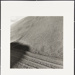 Untitled [Tracks in sand]; Cooper, John; ca. 1983; 1983:0016:0018