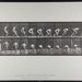Base-ball; running and picking up ball. [M. 287]; Da Capo Press; Muybridge, Eadweard; 1887; 1972:0288:0064