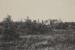Untitled [House among pine trees]; Lamson Studio; Undated; 1986:0021:0017