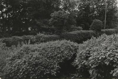 Untitled [Yorkshire]; Dane, Bill; ca. 1972; 2011:0014:0001