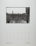 [Page Five of 1981 Calendar - May]; Coppola, Richard; 1981; 2000:0141:0005