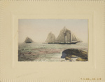 Untitled [Three sailboats]; Thompson, Fred; ca. 1900s; 1986:0024:0005