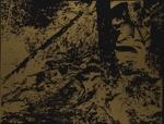 Adirondaks [sp] (from N's photo); Lyons, Joan; 1968; 1971:0451:0012