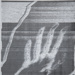 Hands / The Echo Of the Hand Picked Up By a Telecopier Across the Room; Sheridan, Sonia Landy; ca. 1974; 1981:0116:0022