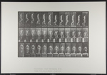 Descending stairs. [M. 125]; Da Capo Press; Muybridge, Eadweard; 1887; 1972:0288:0032