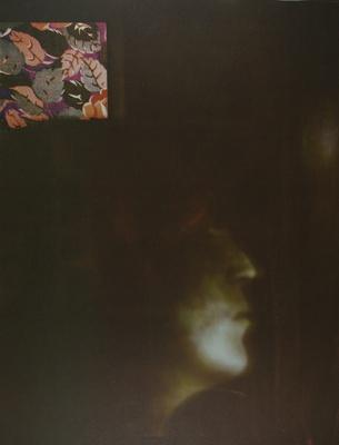 Presences [Leaves]; Lyons, Joan; 1980; 1981:0004:0006