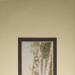 Untitled [Birch trees]; Thompson, Fred; ca. 1900s; 1986:0022:0008