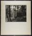 [slab wood cabin in woods]; Hahn, Alta Ruth; ca.1930; 1982:0020:0012