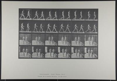 Walking. [M. 12]; Da Copa Press; Muybridge, Eadweard; 1887; 1972:0288:0009