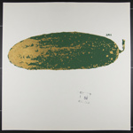 Untitled [Large pickle]; Novak, Linda; 1970; 1972:0096:0068