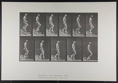 Descending stairs. [M. 126]; Da Capo Press; Muybridge, Eadweard; 1887; 1972:0288:0033