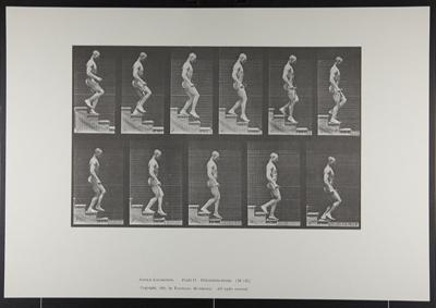 Descending stairs. [M. 126]; Da Capo Press; Muybridge, Eadweard; 1887; 1972:0288:0033