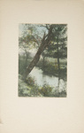 Untitled [Stream]; Thompson, Fred; ca. 1900s; 1986:0025:0005