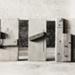Untitled [Blocks of wood]; Paris, Bill; ca. 1970s; 1979:0038:0010
