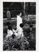 Kamaitachi #24; Hosoe, Eikoh; 1968; 1987:0049:0026