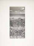Untitled [Landscape]; Wood, John; Undated; 1975:0012:0029