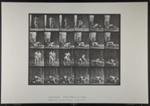 Wrestling; lock. [M. 346]; Da Capo Press; Muybridge, Eadweard; 1887; 1972:0288:0092