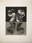 Untitled [Motorcycle riders); Wood, John; ca. 1966; 1975:0012:0033