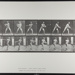 Base-ball; batting. [M. 279]; Da Capo Press; Muybridge, Eadweard; 1887; 1972:0288:0056