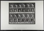 Base-ball; catching and throwing. [M. 283]; Da Capo Press; Muybridge, Eadweard; 1887; 1972:0288:0060