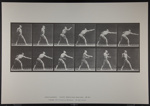 Strike a blow (right hand). [M. 344]; Da Capo Press; Muybridge, Eadweard; 1887; 1972:0288:0090