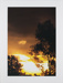 Untitled [Sunset]; Larson, Nate; undated; 2011:0015:0005