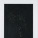Untitled [Woods at night]; Larson, Nate; undated; 2011:0015:0007