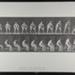 Rising from chair. [M. 249]; Da Capo Press; Muybridge, Eadweard; 1887; 1972:0288:0045