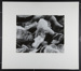 [abstract double exposure of shells] ; Freemesser, Bernard; 1969; 1982:0109:0002