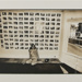 Untitled [Nude woman and photographs]; Krims, Les; 1971; 1972:0149:0001