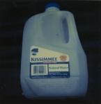 Untitled [Kissimmee]; Prez, James; ca. mid 2000s; 2008:0007:0069
