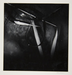 [Untitled, image of a reed and sand] ; Wells, Alice; 1962; 1972:0287:0117